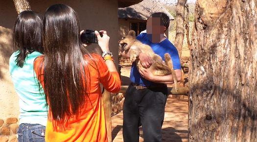 Turista tirando foto com filho de leão