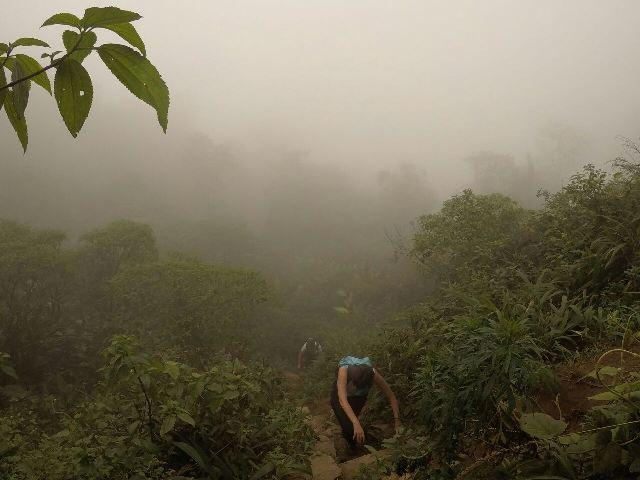 Neblina na Trilha da Ferradura em Paranapiacaba SP