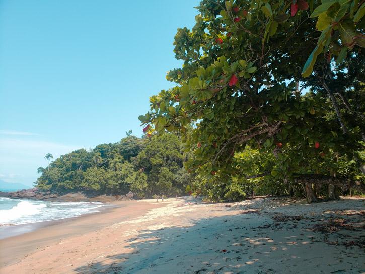 praias desertas ubatuba