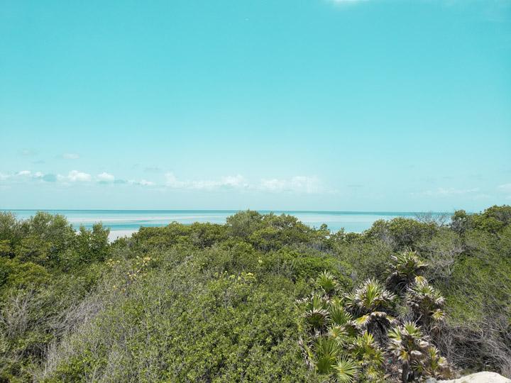 Lagoa e água doce e salgada na Isla Blanca México
