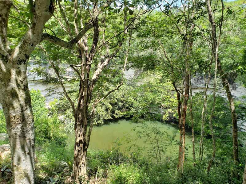 Cenote Sagrado Chichén Itzá México
