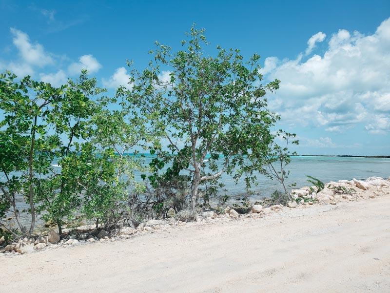 Parque Ecológico Punta Sur Quintana Roo