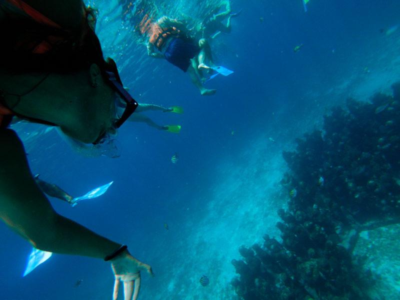 Snorkeling no Museu subaquático