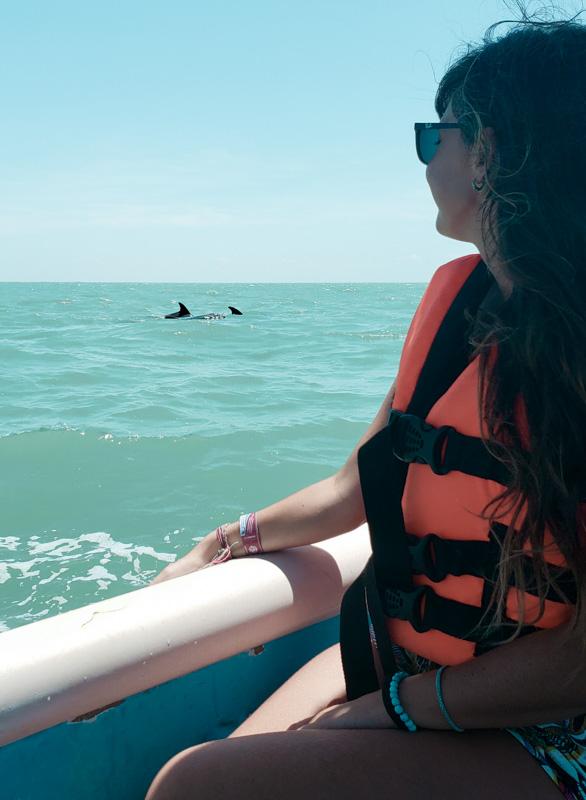 avistamento de golfinhos na Laguna de Términos